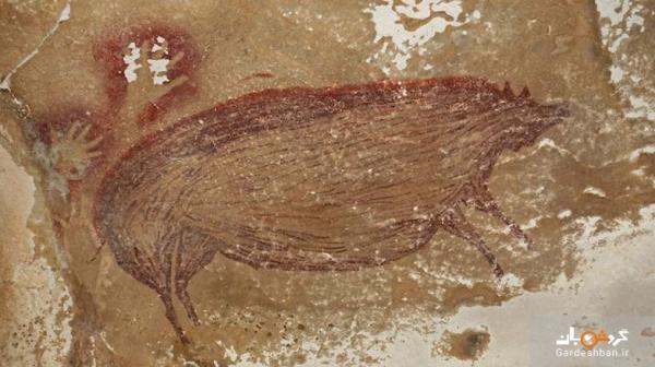عکس، نقاشی خوک 45000 ساله، قدیمی ترین هنر باستانی حیوانات در جهان